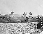 Battlefield at Antietam on the day of battle photo